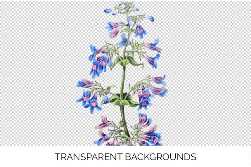 blue-flower-clipart
