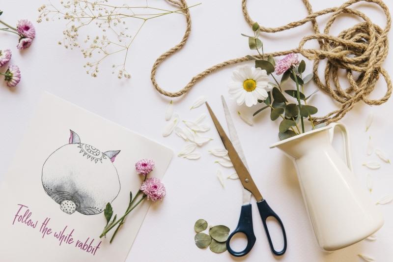 amy-in-wonderforest-hand-drawn-set