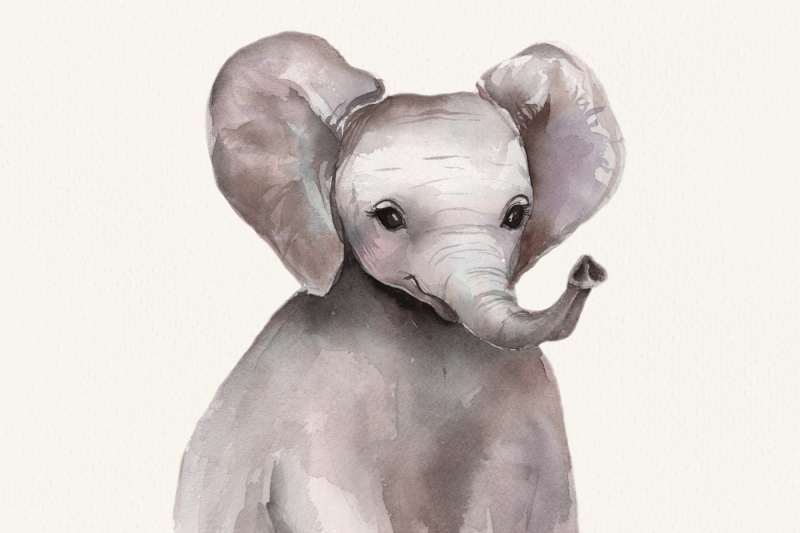 cute-watercolor-animals