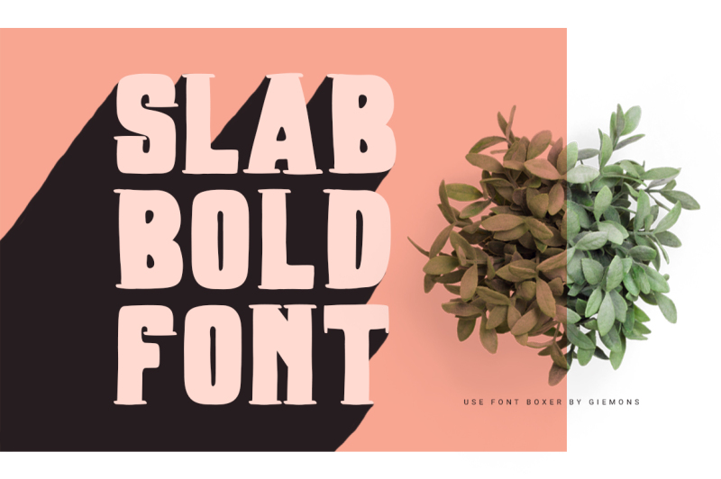 boxer-typeface