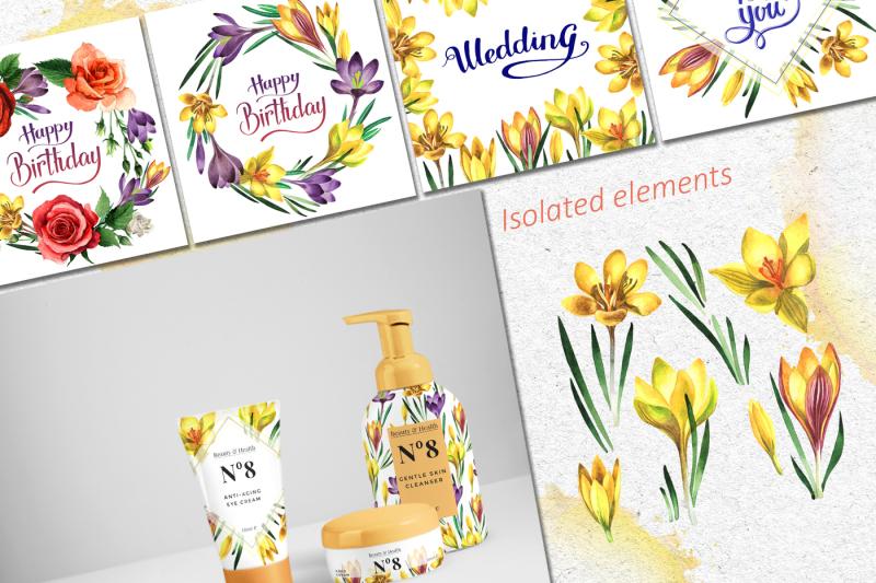 yellow-crocuses-png-watercolor-flower-set