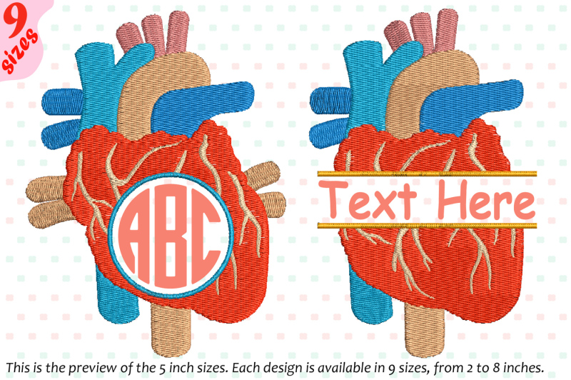 heart-circle-split-embroidery-design-science-anatomy-frame-227b