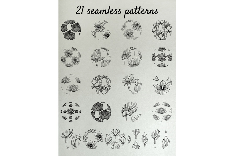 lotus-illustrations-and-seamless-patterns-nbsp