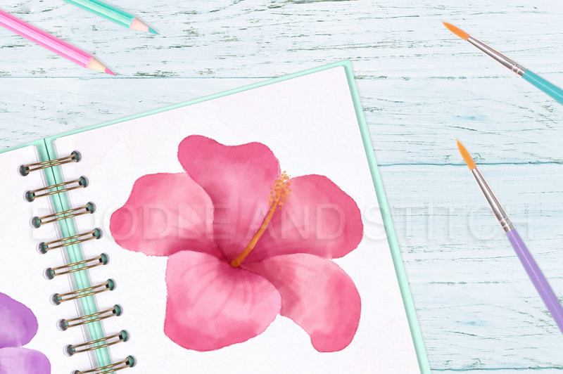 tropical-flower-watercolor-flower-illustrations