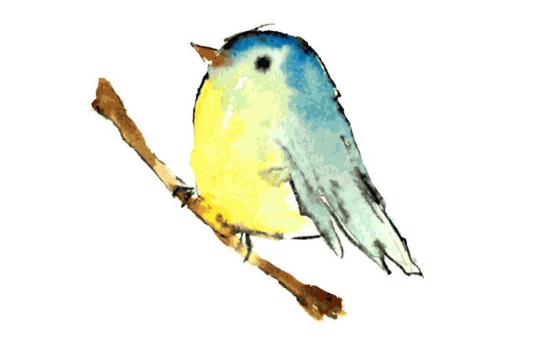 bird-on-the-tree