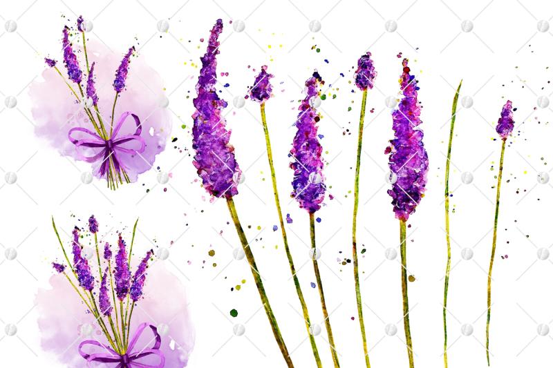 lavender-watercolor-clipart-collection-printable-purple-flowers-purple