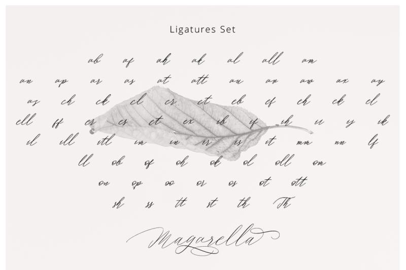 fresh-products-magarella-script