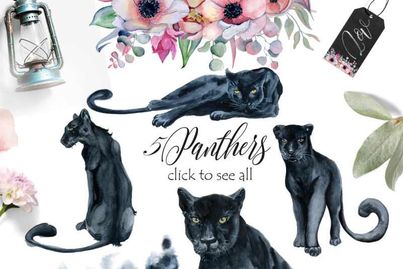 panthers-and-floral-watercolor-set