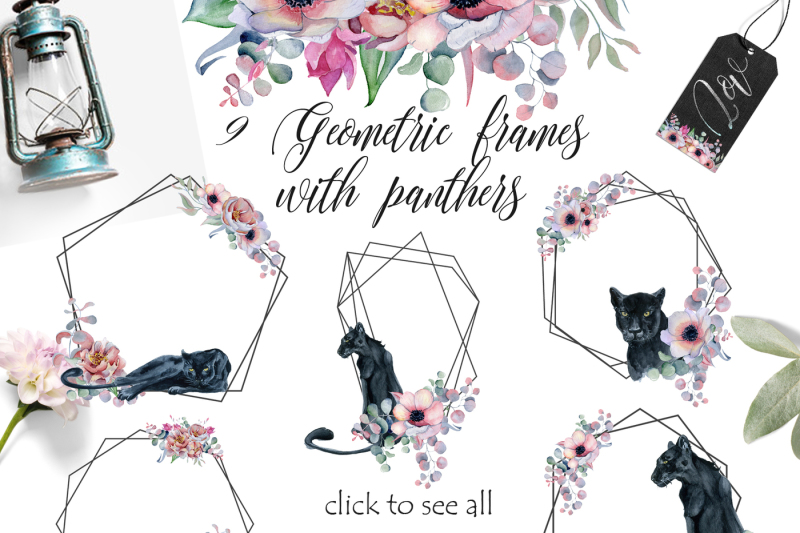 geometric-frames-with-panthers