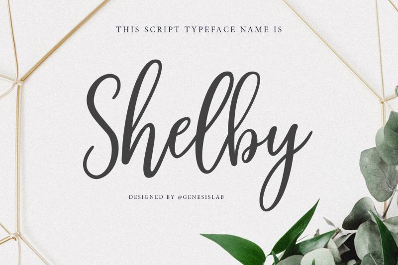 shelby-script