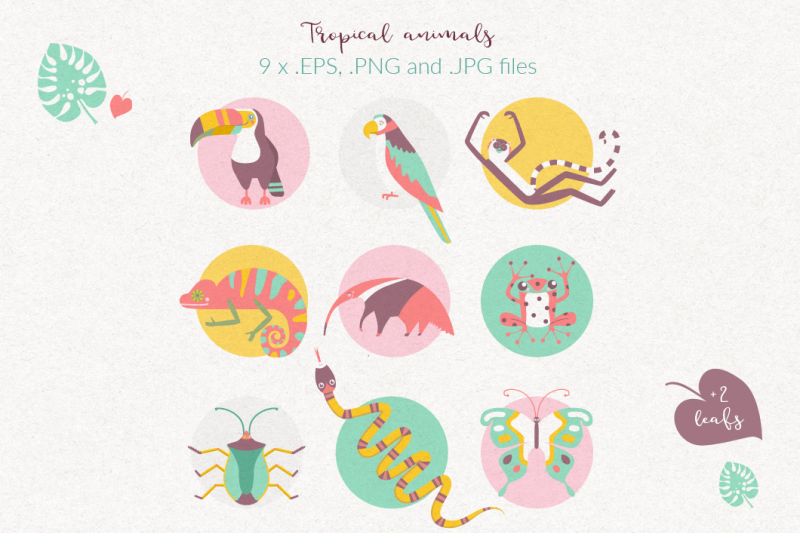 tropical-animals-vector-graphic-set