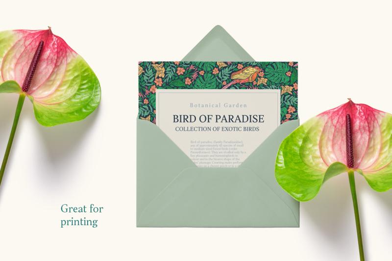 bird-of-paradise-patterns