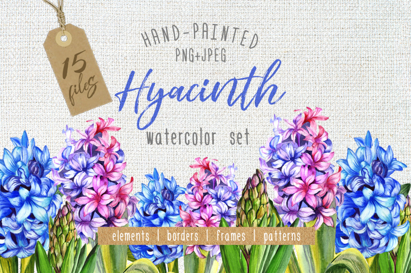 colorful-hyacinth-png-watercolor-set