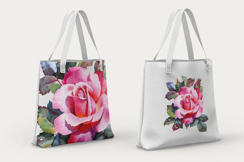 rose-flower-botanical-illustration