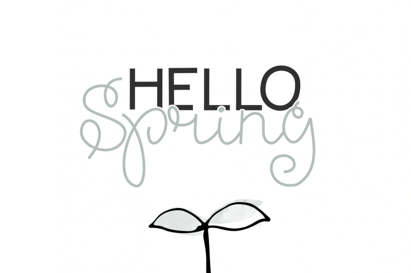 spring-sunshine-a-serif-and-script-font-duo