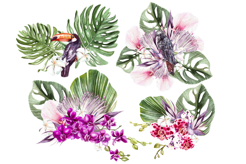 hand-drawn-watercolor-tropic-3