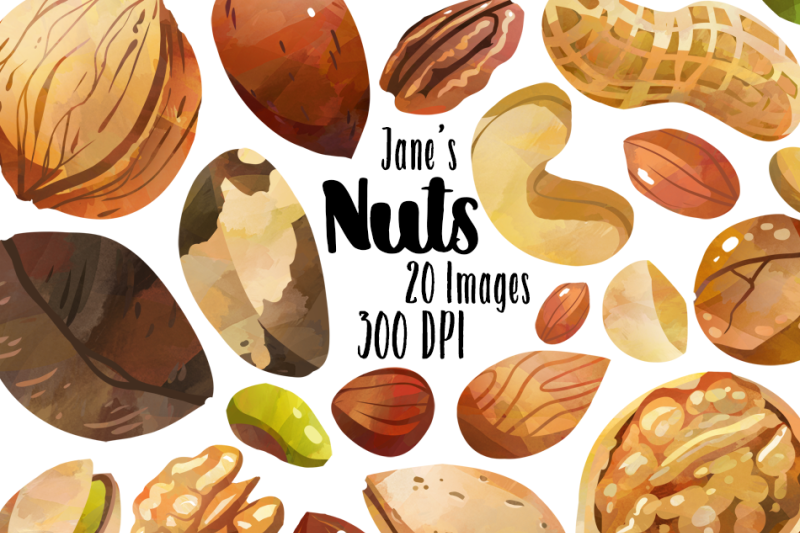 watercolor-nuts-clipart