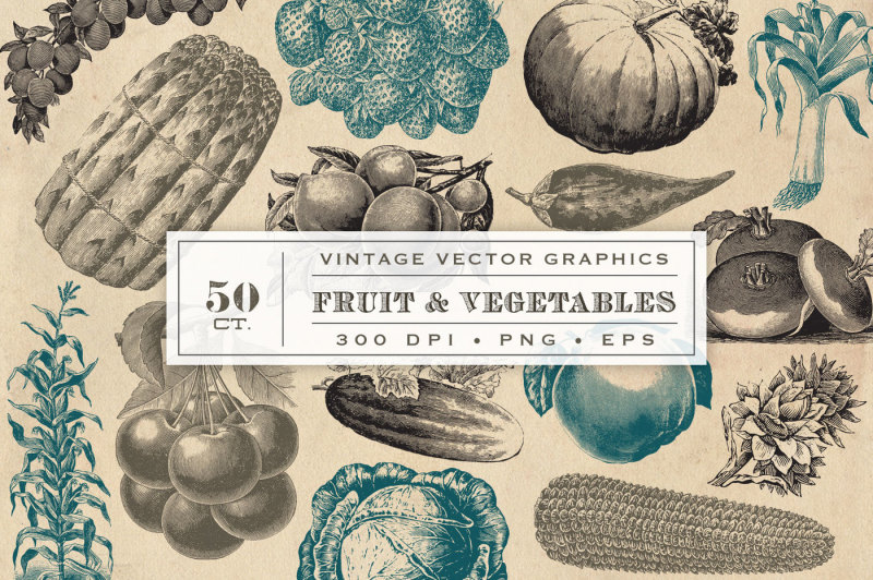 vintage-fruit-and-vegetable-vector-graphics