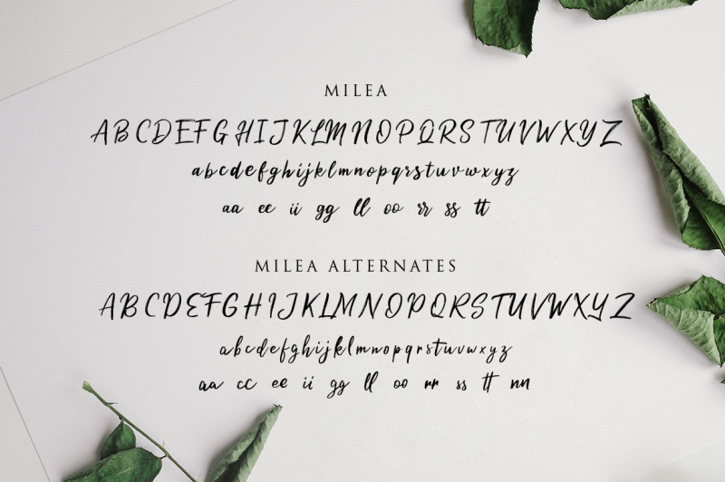 milea-handwritten-brush-font-duo