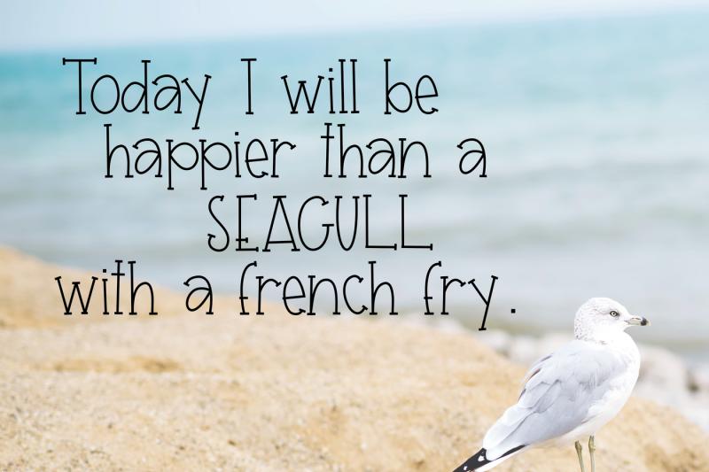 seagull-a-fun-handwritten-font