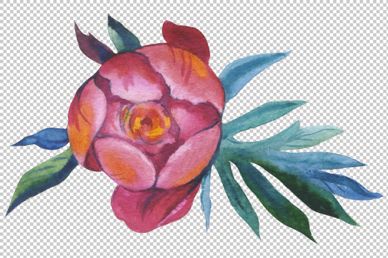 red-peony-watercolor-flower-png