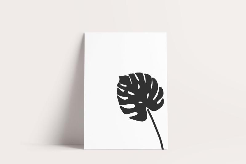 botanical-garden-illustration-graphics