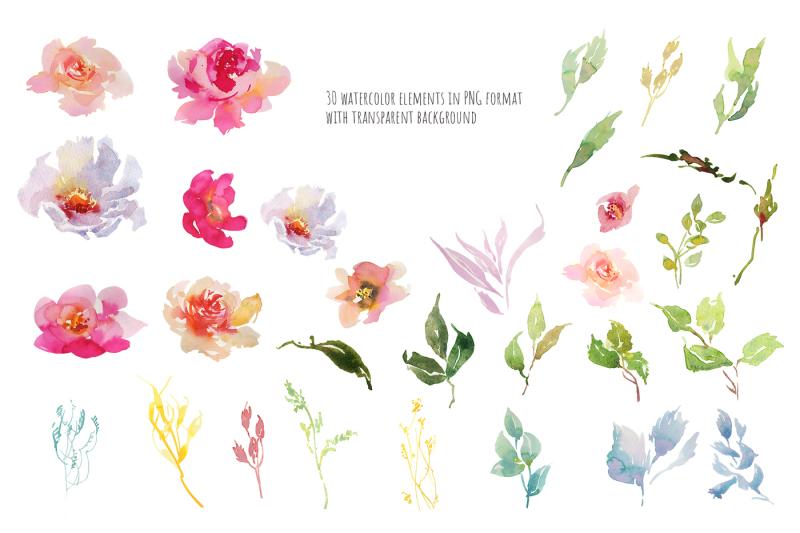 blooming-peonies