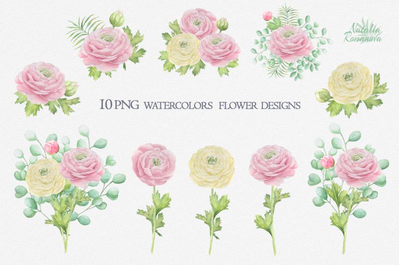 watercolor-ranunculus