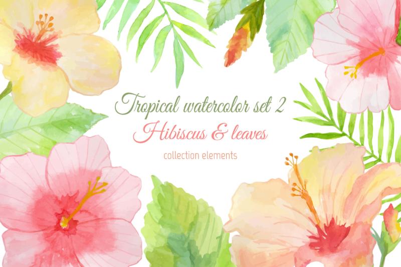 tropical-watercolor-set-2-hibiscus
