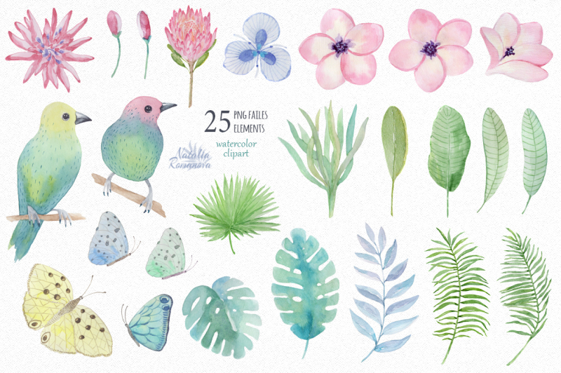 tropical-watercolor-set-3-plumeria