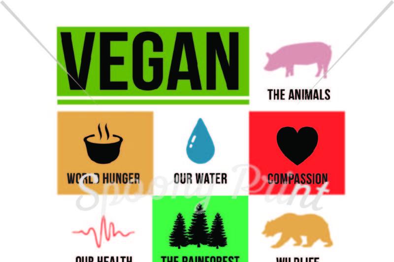 vegan-for-everything