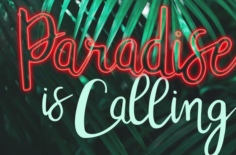 tropicalling-a-playful-script-font