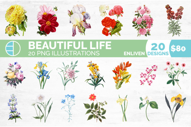 flowers-bundle-100-flowers