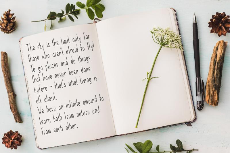 paper-daisy-font