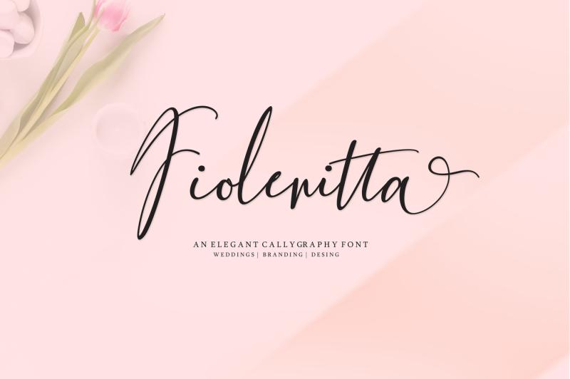 new-fiolenitta