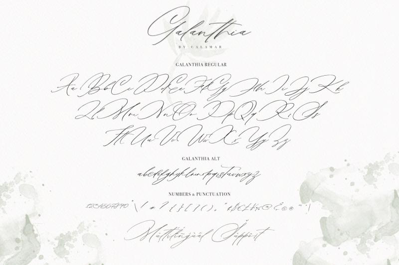 galanthia-script