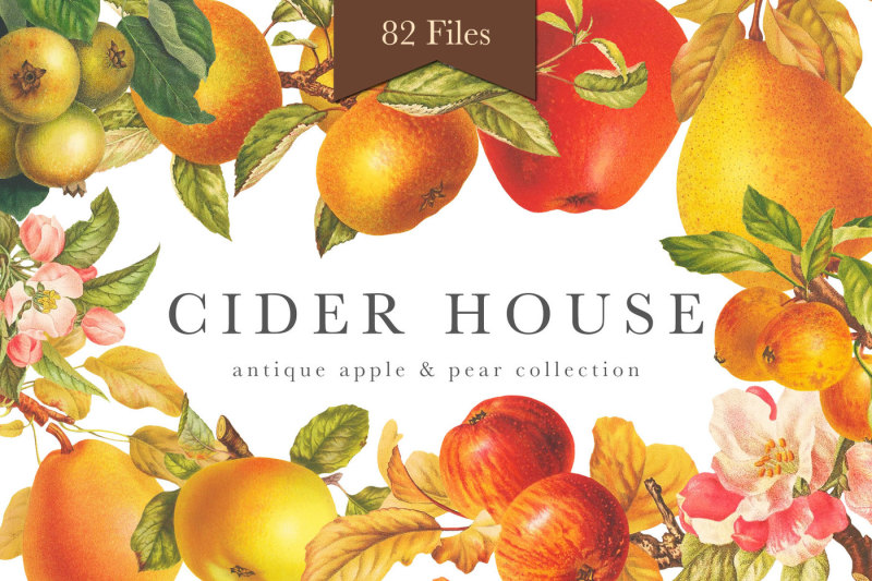 cider-house-antique-apple-and-pear-graphics