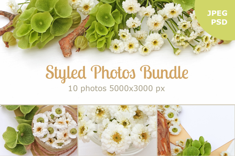 Free Styled Photos Bundle with Molucella (PSD Mockups)