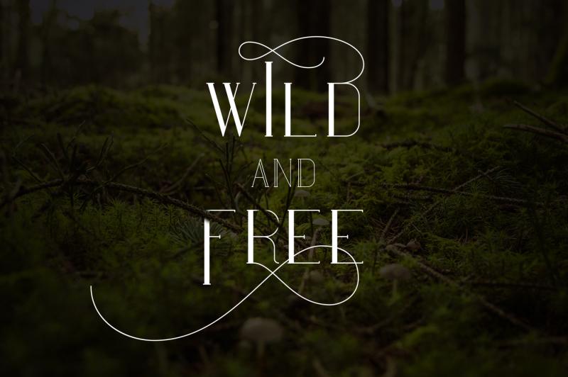 maria-serif-font-50-percent