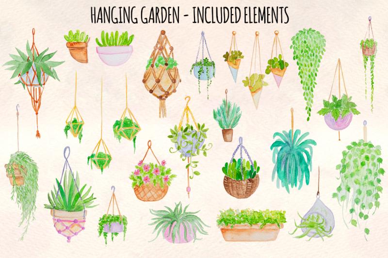 26-hanging-plants-garden-watercolor-vector-elements