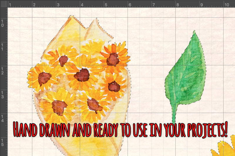 bright-sunflowers-34-sunny-vector-watercolor-graphics