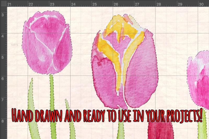 53-bright-tulip-watercolor-vector-clip-art