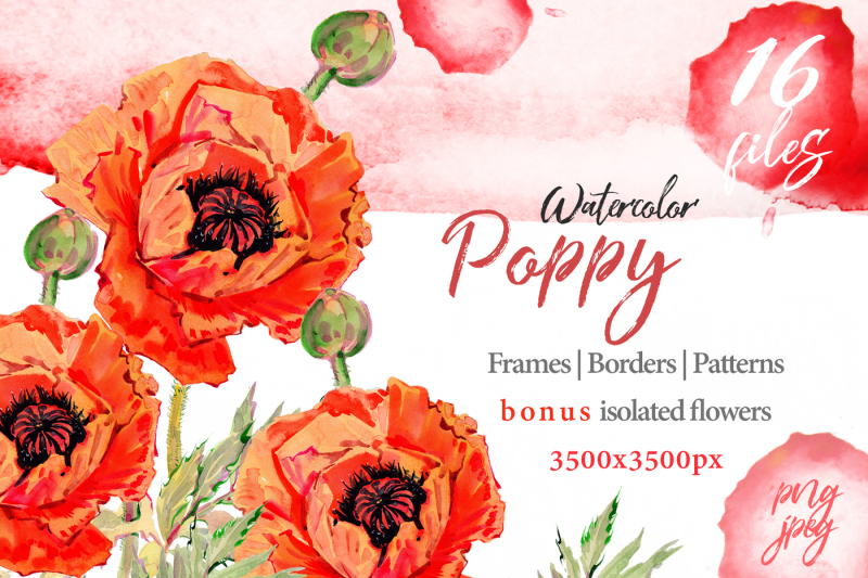 watercolor-red-poppy-png-set