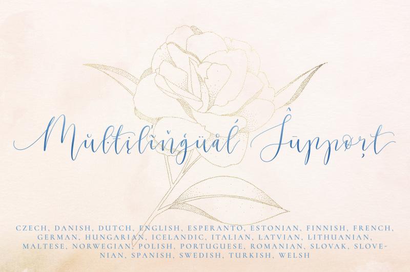 allegoria-elegant-calligraphy-font
