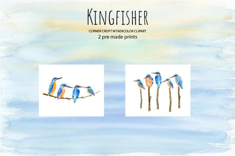 watercolor-kingfisher-illustration