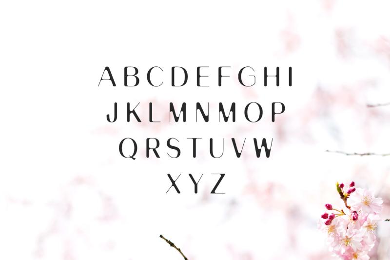banny-sans-serif-font-family