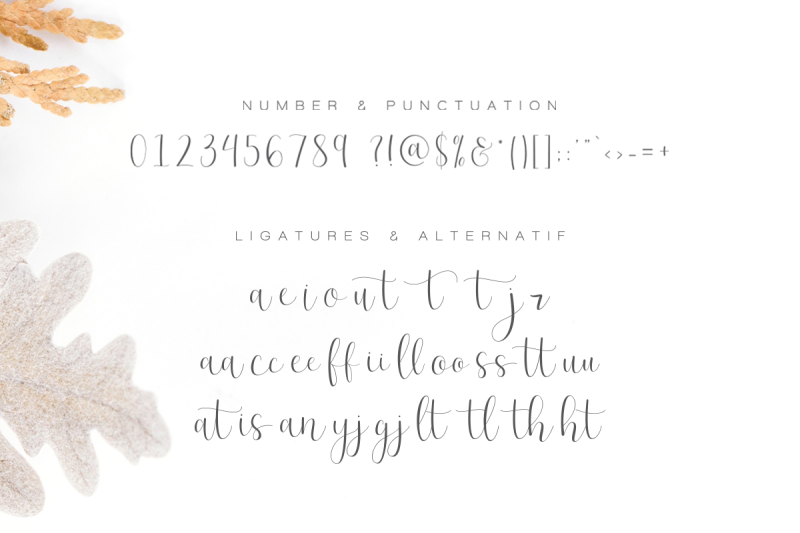 effort-calligraphy-font-50-percent-off