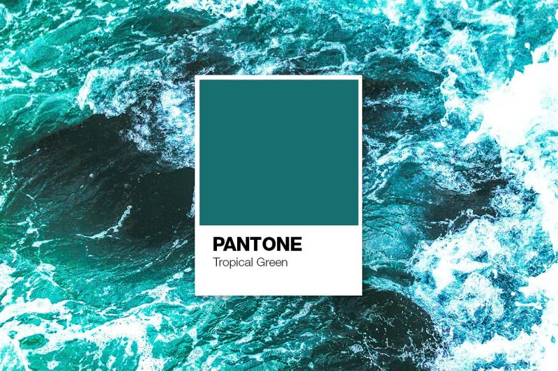 pantone-color-cards-mockup