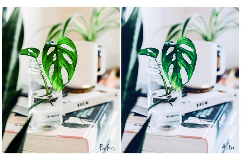 a5-vsco-inspired-lightroom-presets