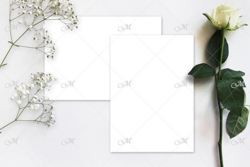 Free White Rose Mockup. PSD+JPG (PSD Mockups)
